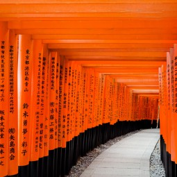 Fushimi-Inari Taisha, Kyoto (photo (c) Esther Wagner)